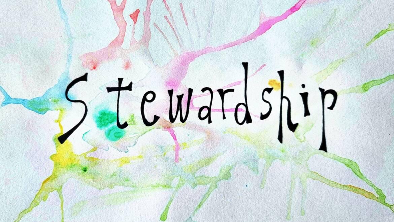 Empowering The Circular Economy Transition Through Stewardship: A Critical Vignette