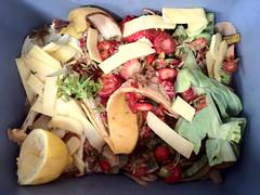 Organic waste: Biobased circularity